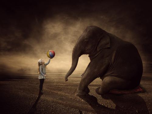 Journeyelephant